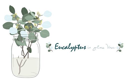 Eucalyptus Branch In Glass Vase Set