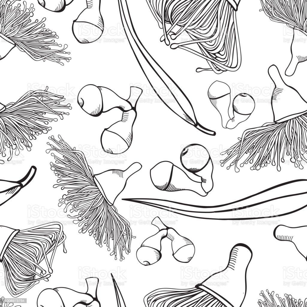 Eucalyptus Gumnut Flowering Seamless Pattern vector art illustration