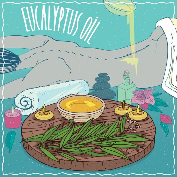 illustrazioni stock, clip art, cartoni animati e icone di tendenza di eucalyptus oil used for body massage - china drug