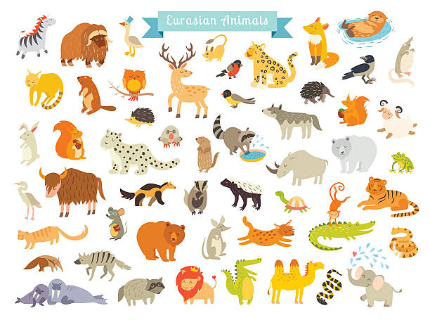 eurasian animals vector illustration. the most complete big vector set - otter stock illustrations, clip art, cartoons, & icons