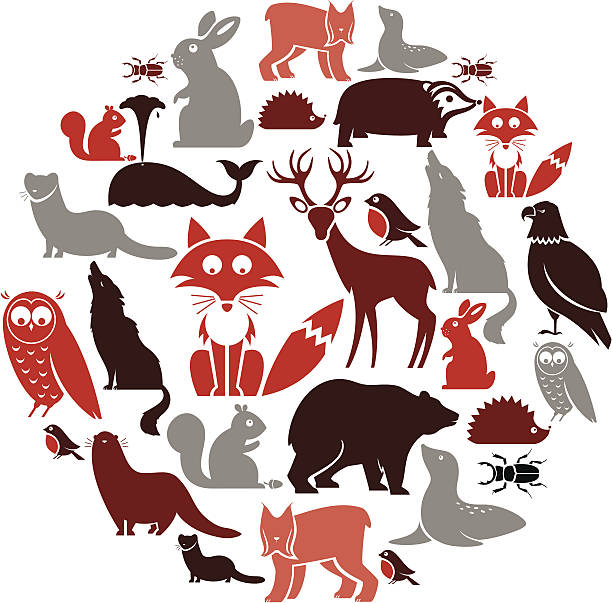 european animal icon set - otter stock illustrations, clip art, cartoons, & icons