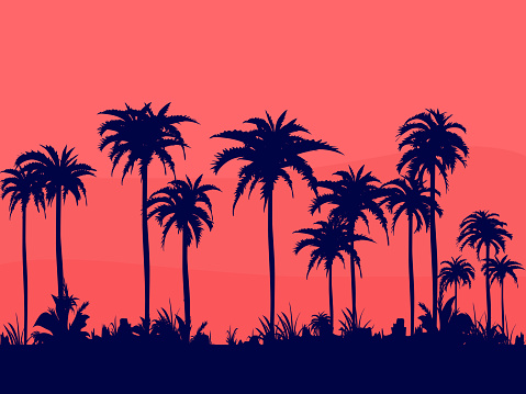 Evenings on the beach with dark colored coconut trees will relax the orange summer sky.