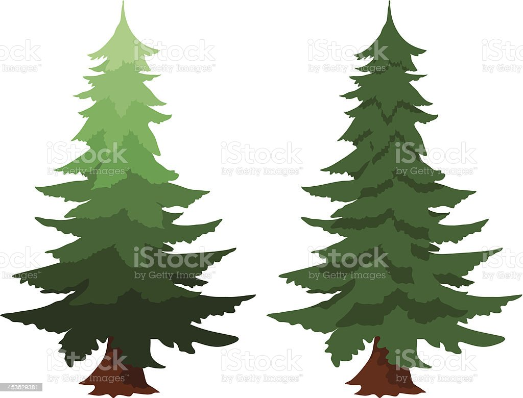 royalty free douglas fir clip art vector images illustrations rh istockphoto com  evergreen tree with snow clipart