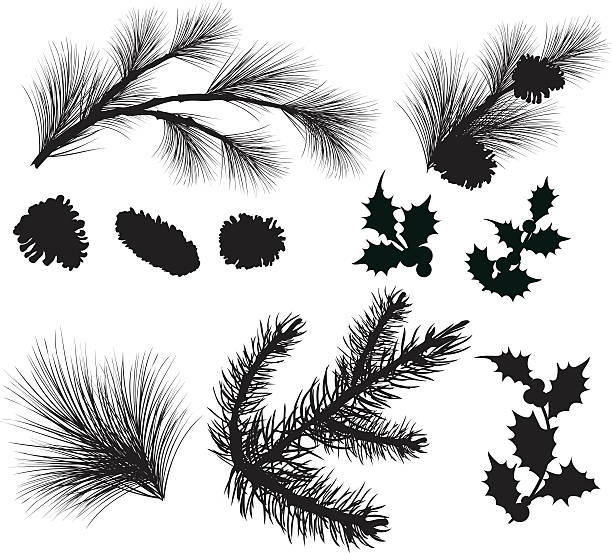 Evergreen Sprigs and Holly Leafs Silhouettes Clipart Evergreen tree elements silhouettes with various sized Pine cones and multiple sprigs of evergreen branches. Spruce and holly leaf with berries silhouettes. Elements can be manipulated and moved. pine tree stock illustrations