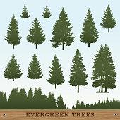 Evergreen Tree Silhouettes