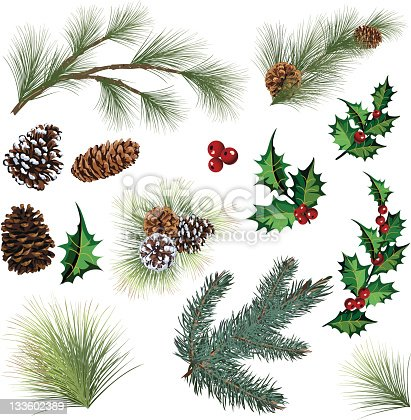 istock Evergreen Twig Elements and Holly Leaf with Berries Clipart 133602389