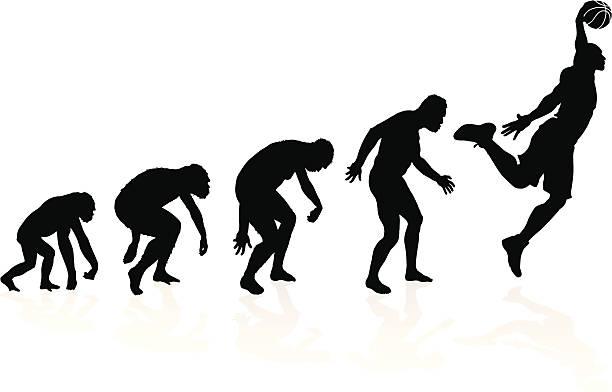 Evolution of a Basketball Player vector art illustration