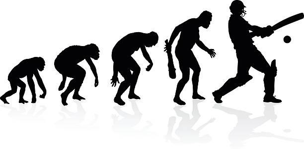 Evolution of a Cricket Player vector art illustration