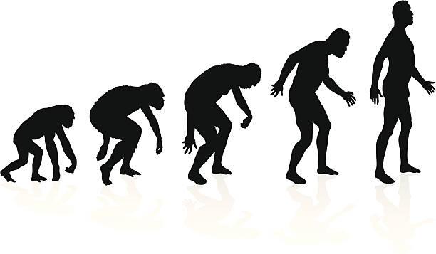 Evolution of man in silhouettes vector art illustration