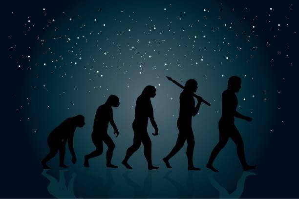 illustrazioni stock, clip art, cartoni animati e icone di tendenza di evolution of man - man evolution