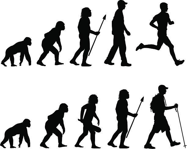 illustrazioni stock, clip art, cartoni animati e icone di tendenza di evoluzione del corridore e hiking - man evolution
