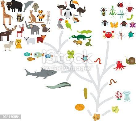 Organismus Biologie