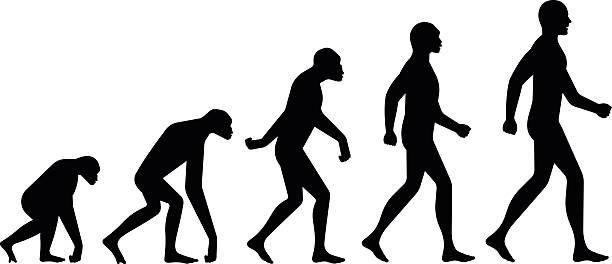 ewolucja krojów - postęp stock illustrations