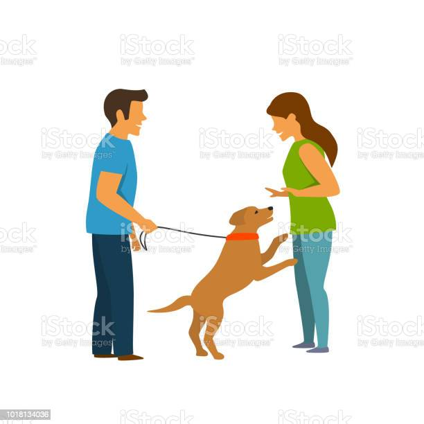 Excited dog jumping on people obedience pet training graphic scene vector id1018134036?b=1&k=6&m=1018134036&s=612x612&h=7lejtu4iabnd86wkxnrlhtdimsne688rlimw1egb8as=