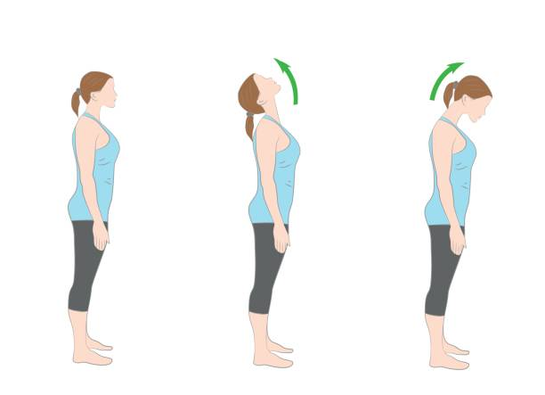 exercises for the neck. medical advice. vector illustration. exercises for the neck. medical advice. vector illustration. neck stock illustrations