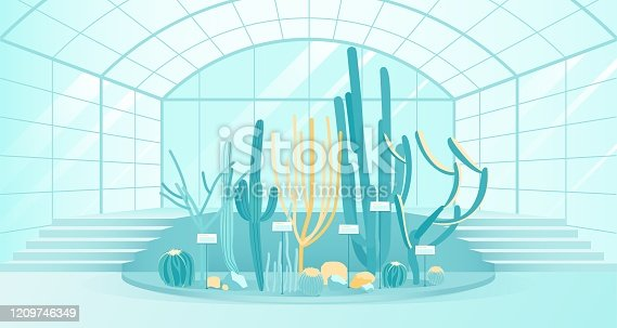Botanical Garden or Greenhouse with Blossom Cactus of Different Shapes. Exhibition Collection of Grow Spiky, Wild, Tropical and Mexican Plant Inside Glass Building. Modern Flat Vector Illustration