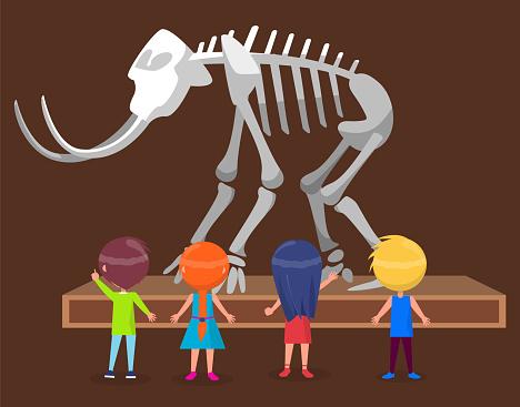 Exposición en Museo Natural con Esqueleto de Mamut