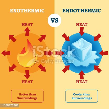 Exothermic and Endothermic vector illustration. Labeled educational scheme with burning and melting physical process explanation. Diagram with surrounding heat absorption or release description.