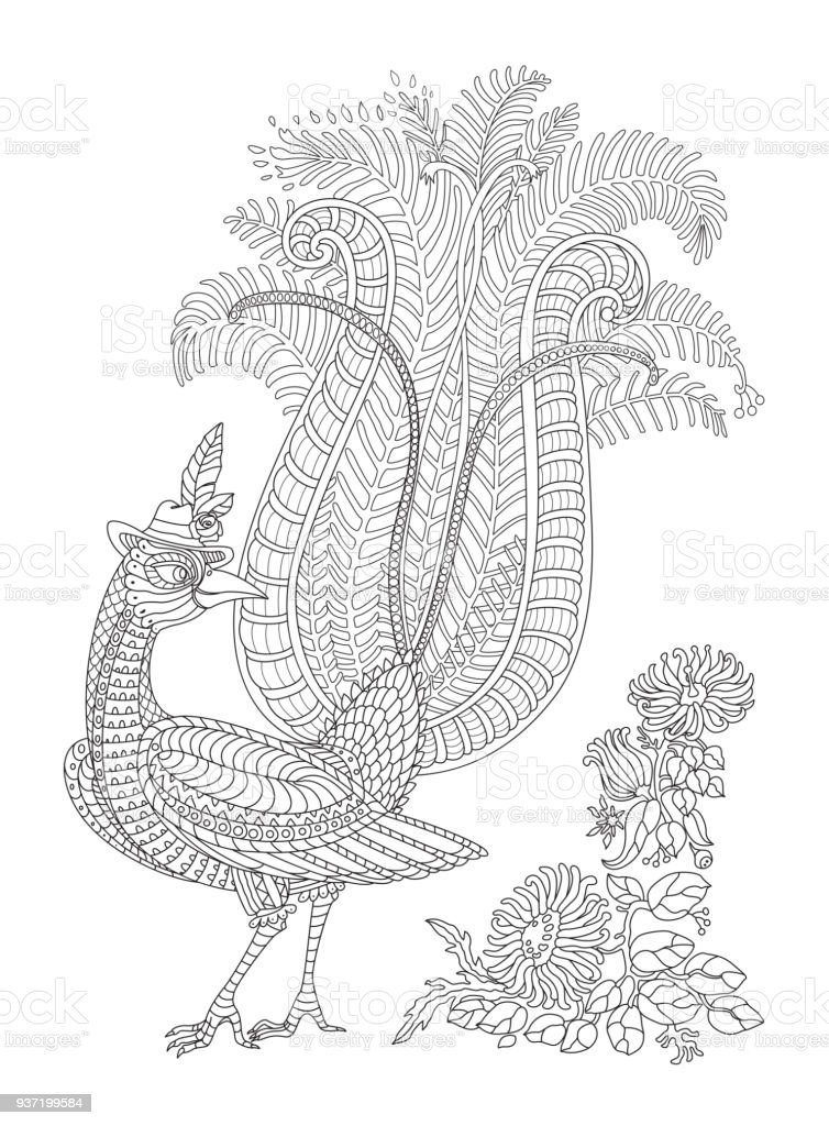 Ilustración de Aves Exóticas Flores Tropicales Fantásticos Rama ...