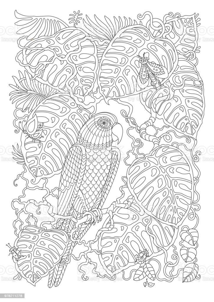 Ilustración de Aves Exóticas Liana Tropical Fantástico Rama Follaje ...