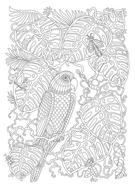Vectores de Libro Para Colorear Página Ladybugs Y Flores e ...