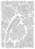 Exotic bird with fantastic flowers, branches, leaves. Black and white contour thin line drawing. Vector decorative fantasy stylized parrot silhouette in the jungle. T-shirt print, Batik paint. Adults Coloring book vertical page