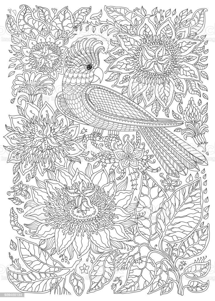 Ilustración de Aves Exóticas Fantásticas Flores Ramas Hojas Dibujo ...