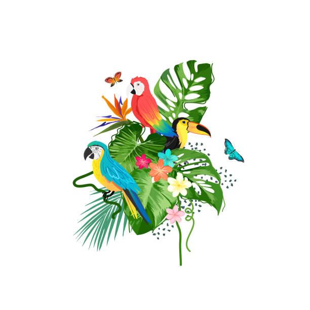 Exotische Vögel und tropische Pflanzen – Vektorgrafik