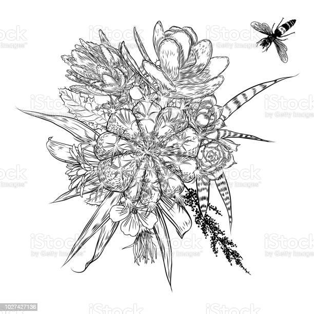 Exotic bouquet set with insects and bugs flying flowers floral with vector id1027427136?b=1&k=6&m=1027427136&s=612x612&h=sobk3dftblr4 2zscgmr neqpa7g4aqaaupc1hmxcqu=