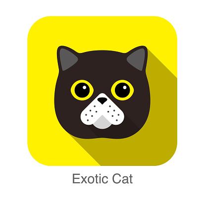 Exotic cat face flat icon design, vector illustration