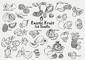 Exotic fruit ink doodle vector icon set. Hand-drawn tropical fruit line art collection.
