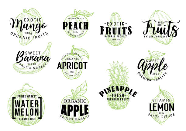 Exotic fruits market lettering sketch Exotic tropical fruits sketch lettering. Vector calligraphy of mango, peach or banana and apricot, organic apple with pineapple, watermelon and citrus lemon fruit banana drawings stock illustrations