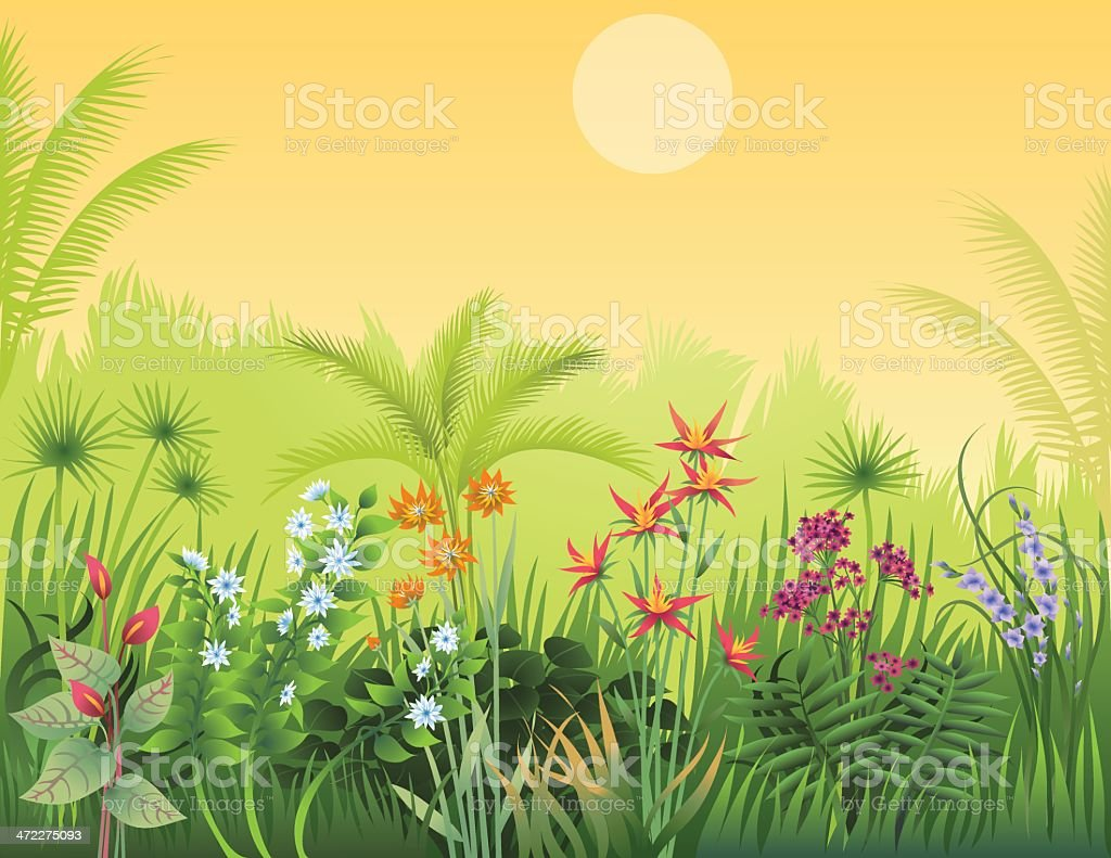Exotic Garden royalty-free stock vector art