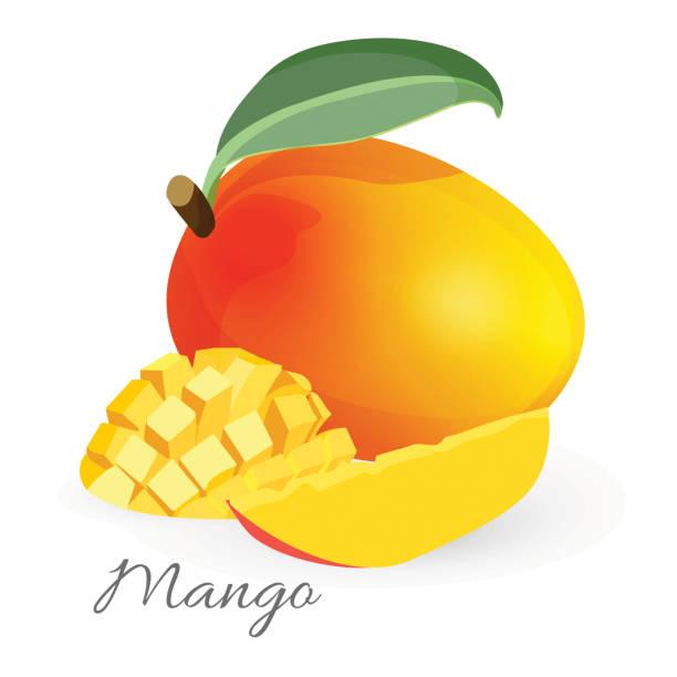 ilustraciones, imágenes clip art, dibujos animados e iconos de stock de fruta tropical exótica mango con la hoja verde en rodajas y todo - mango