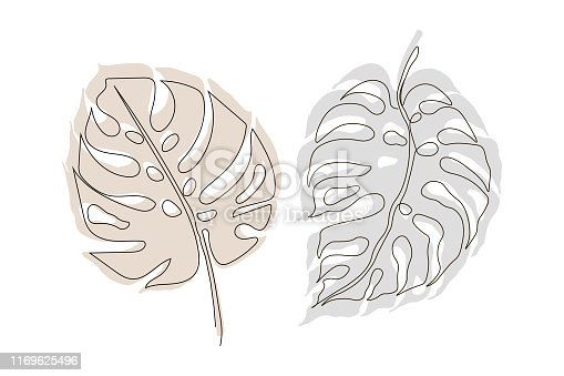 Exotic monstera continuous one line drawing summer tropical leaf hand drawn on white background minimalist design. Monstera leaf Minimal Line Style. Continuous One Line drawing Abstract Vector Tropical Palm Isolated on a White Background. Logo template, Beauty Concept, t-Shirt Print, postcard, poster