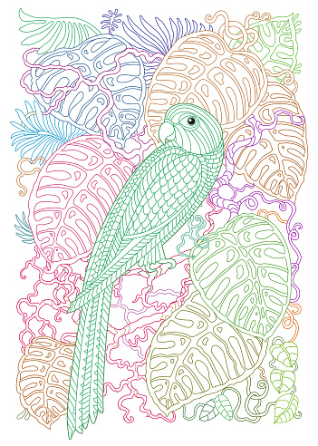 Exotic parrot bird, fairy tale monstera tropical foliage, branch. Contour thin line. Colored contour doodle vector T-shirt print. Anti stress Coloring book page