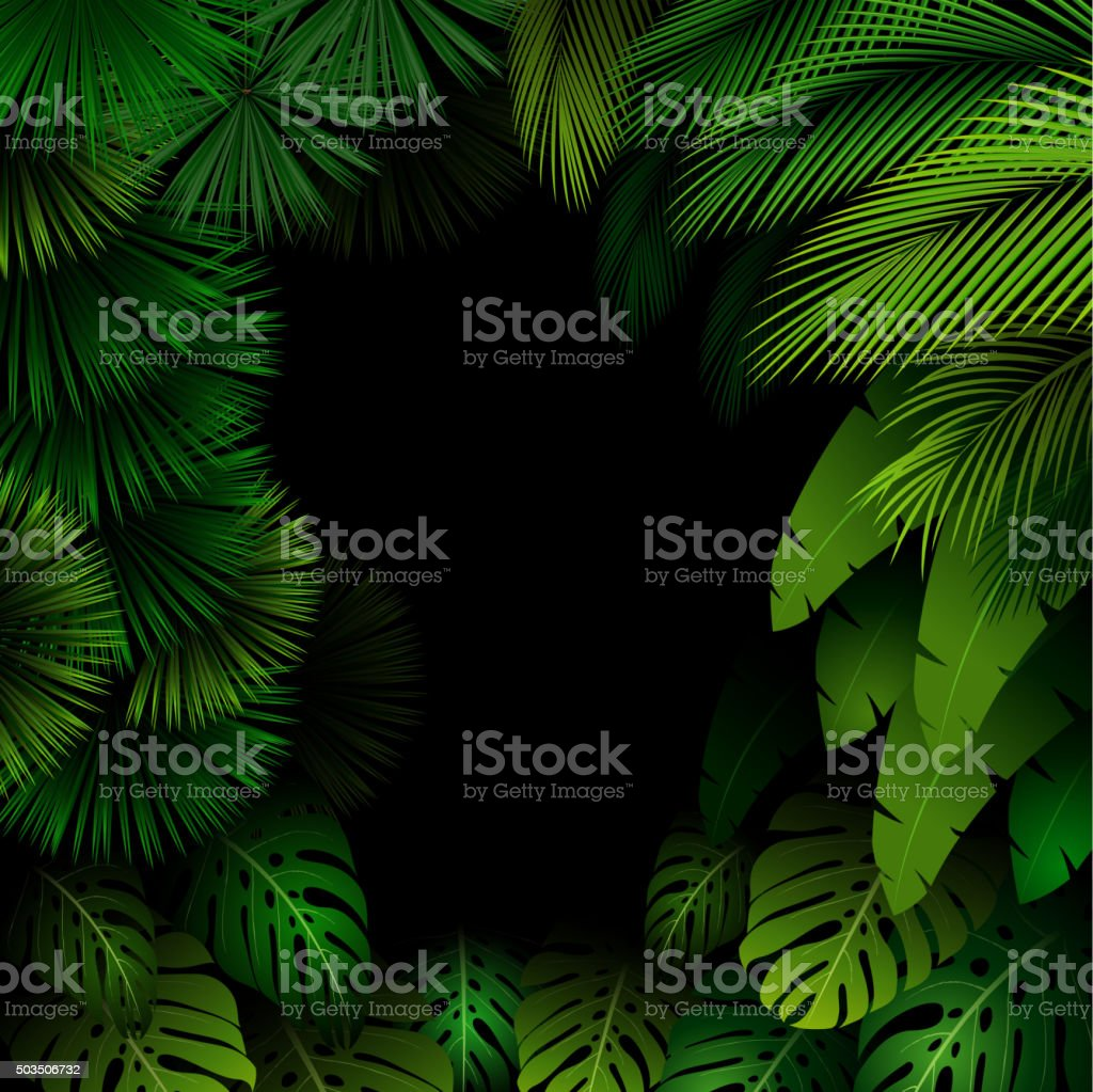 Exotic pattern with tropical leaves on a black background vector art illustration