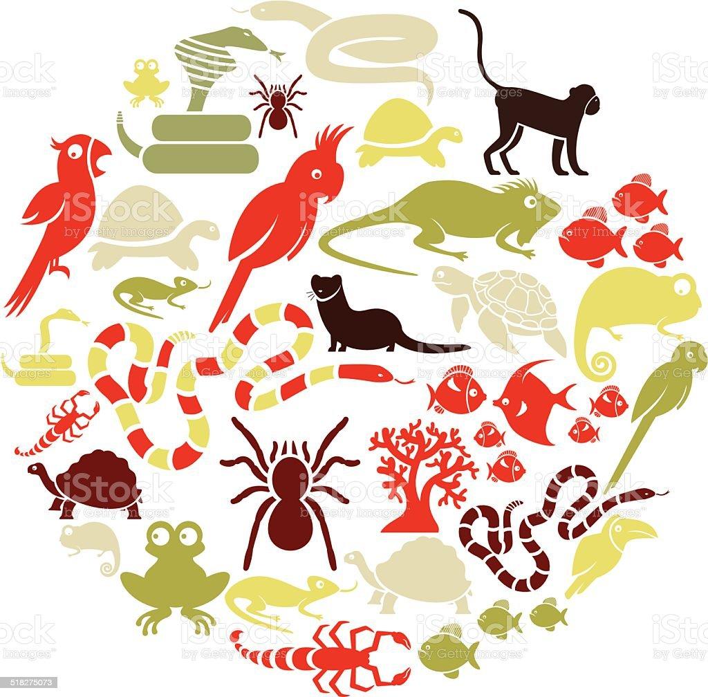 Exotic Pets Icon Set Stock Illustration - Download Image ...