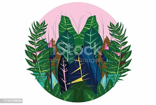 Illustration of various exotic plants and leaves on a pastel pink background