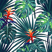 Exotic tropical background with hawaiian plants and flowers. Seamless vector pattern with green monstera and sabal palm leaves, guzmania flowers