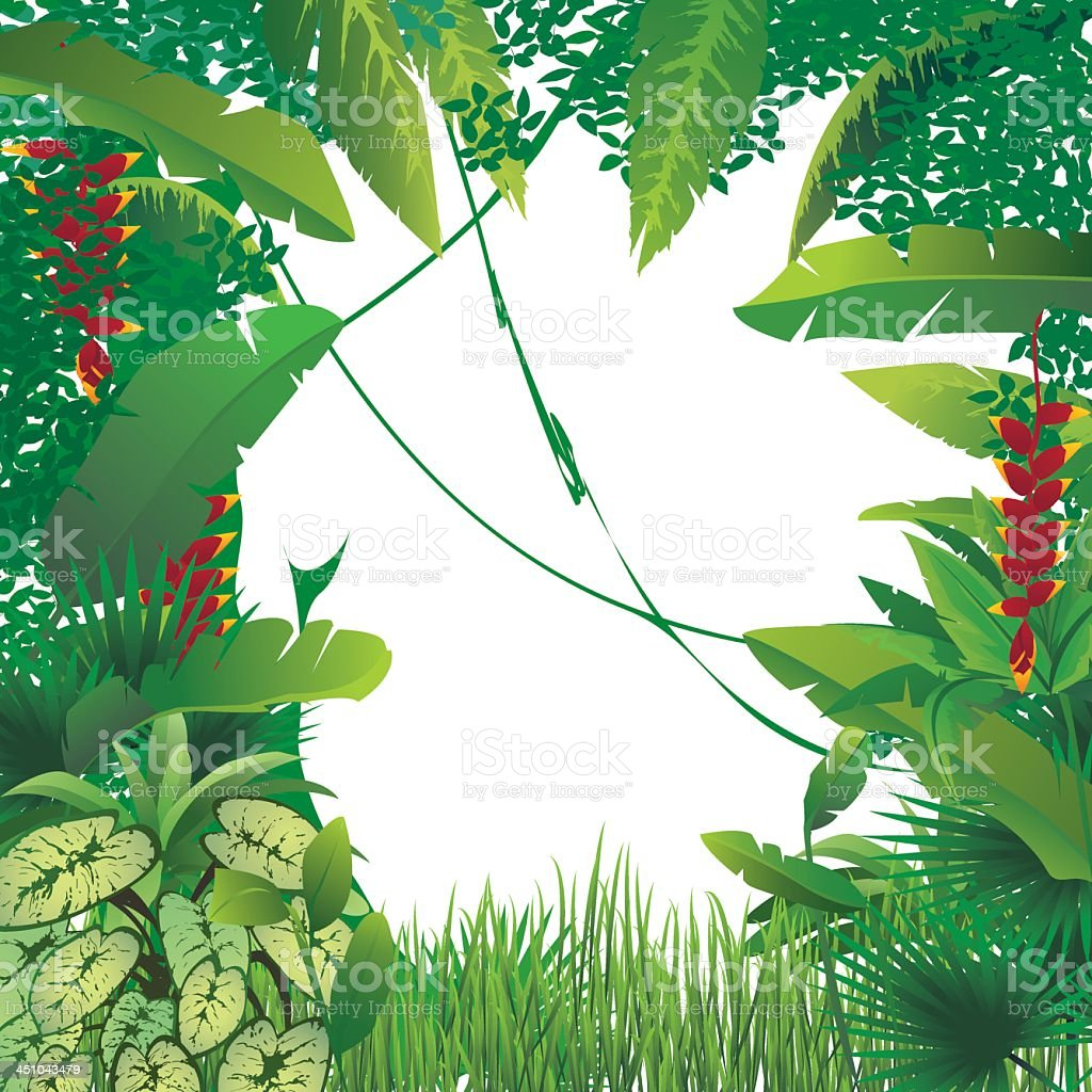 Exotic tropical forest leaf and grass border vector art illustration