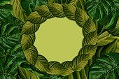 istock Exotic tropical plants 1294323554