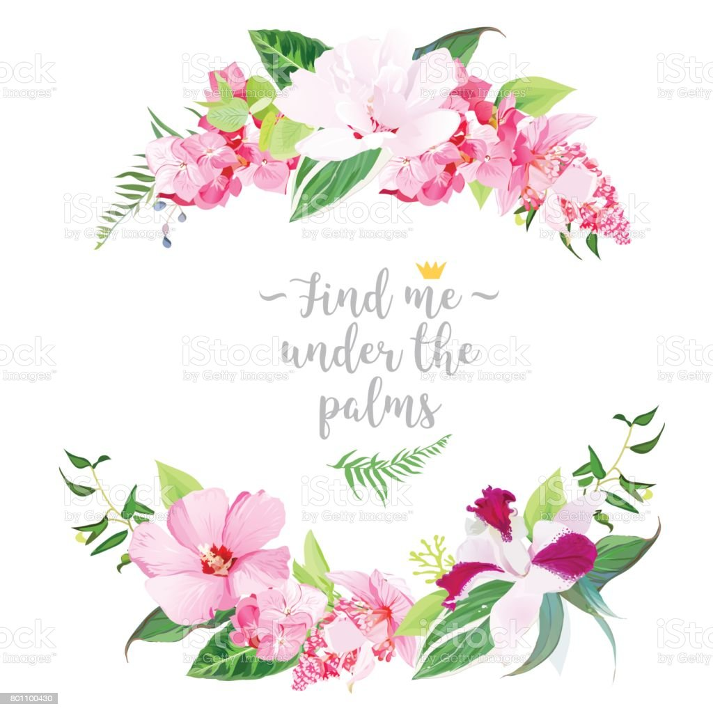 Ilustración de Marco Floral Redondo Tropical Exótica y más banco de ...