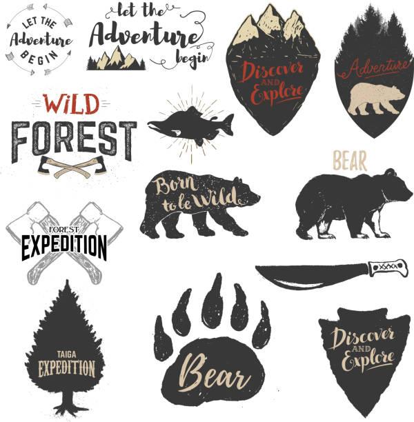 エクスペディション、ディスカバー、アドベンチャーラベルとエンブレムが自慢です。 - 野生動物旅行点のイラスト素材/クリップアート素材/マンガ素材/アイコン素材