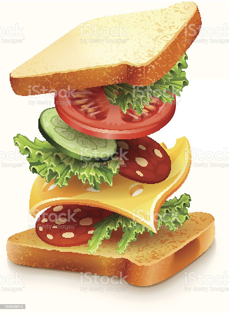 exploded view of sandwich ingredients vector art illustration