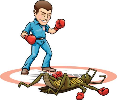 Exterminator Knock Out