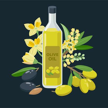 Extra virgin olive oil bottle and olives, flowers, olive fruits composed around - vector banner illustration in flat design.