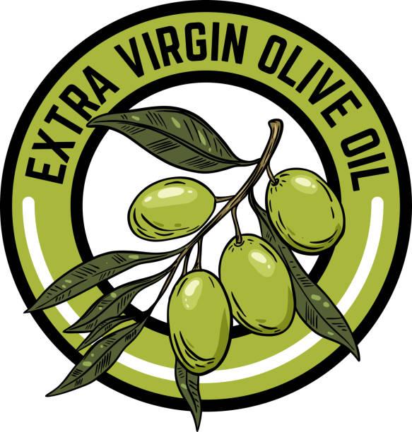ilustrações de stock, clip art, desenhos animados e ícones de extra virgin olive oil. emblem with olive branch. - mediterranean food