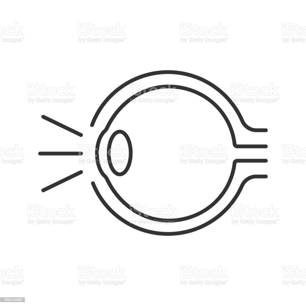 Augeanatomiesymbol Stock Vektor Art und mehr Bilder von Anatomie ...
