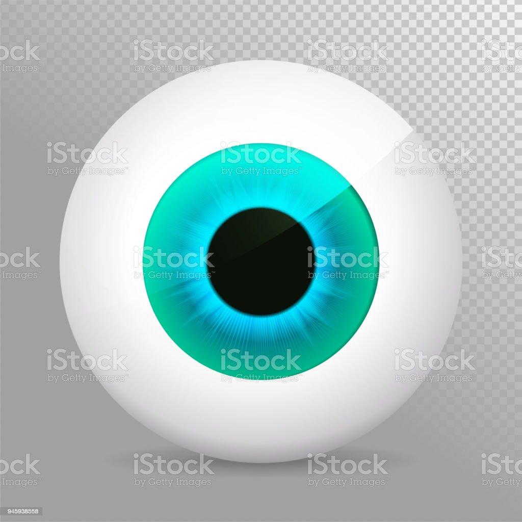 Auge Blau Realistische 3d Blau Augapfelvektorillustration Echte ...